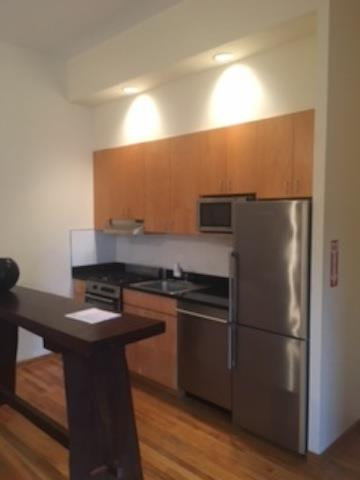 Additional photo for property listing at Lorimer Street Loft  Brooklyn, New York 11211 United States