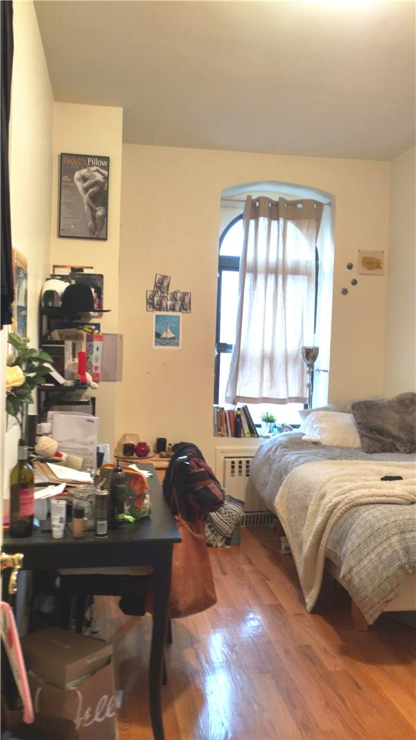 Additional photo for property listing at Sunny APT in prime Williamsburg Location!  Brooklyn, Nueva York 11211 Estados Unidos