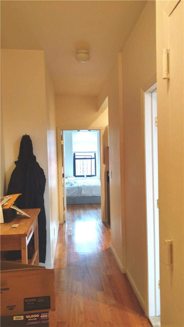 Additional photo for property listing at Sunny APT in prime Williamsburg Location!  Brooklyn, New York 11211 United States