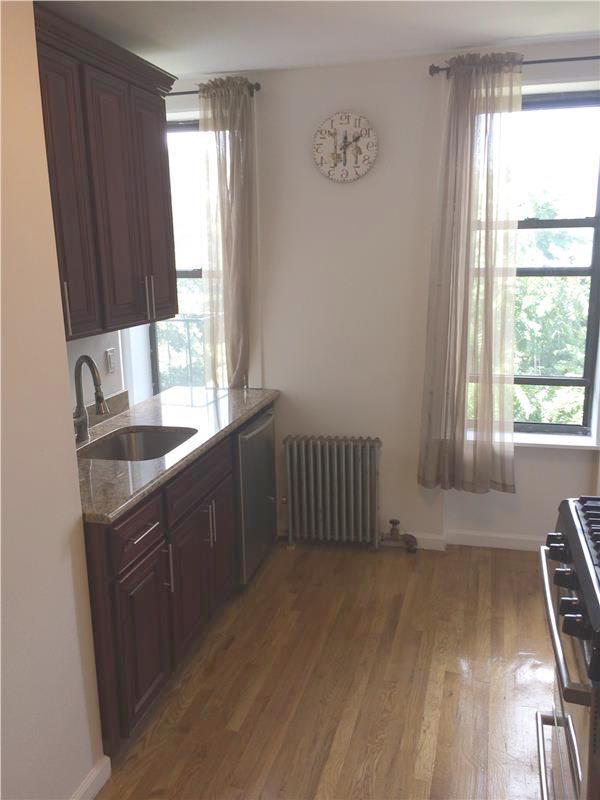 Additional photo for property listing at Sunny One Bedroom Apt in South Slope  Brooklyn, New York 11215 United States