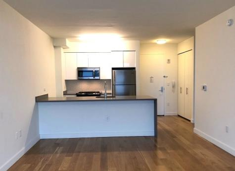Additional photo for property listing at Downtown Downtown Brooklyn, New York 11217 United States