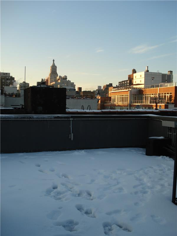East Village 7 bedrooms with a private roof deck