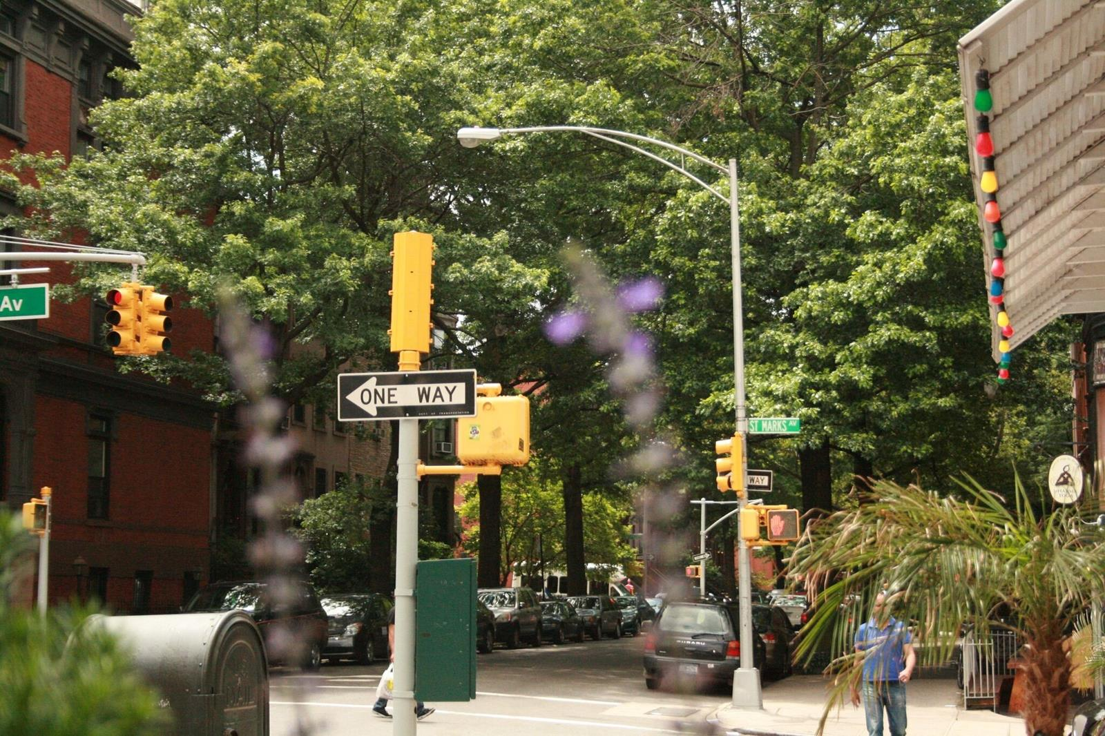 93 6th Avenue Park Slope Brooklyn NY 11217
