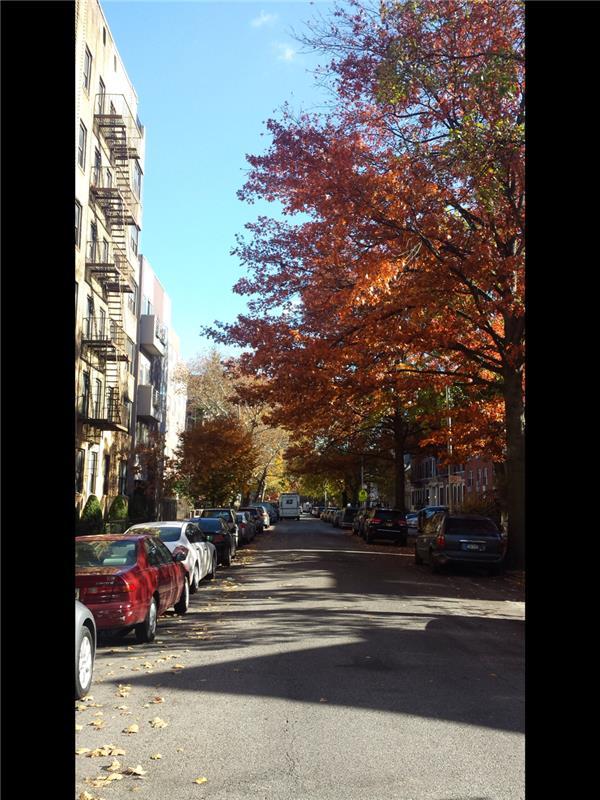 42 Hawthorne Street Prospect Leffert Gdn Brooklyn NY 11225