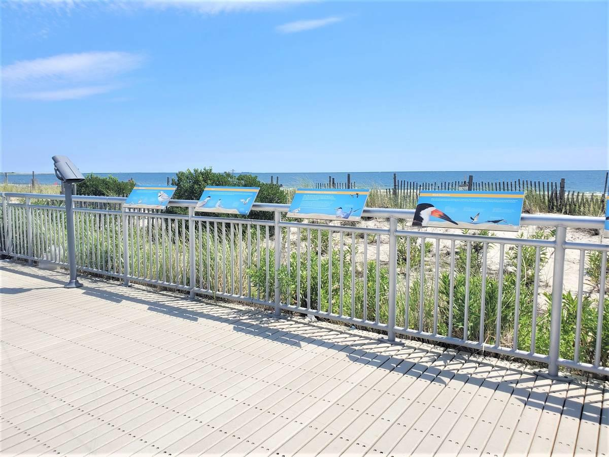 326 Beach 46th Street Queens (Other) Queens NY 11691