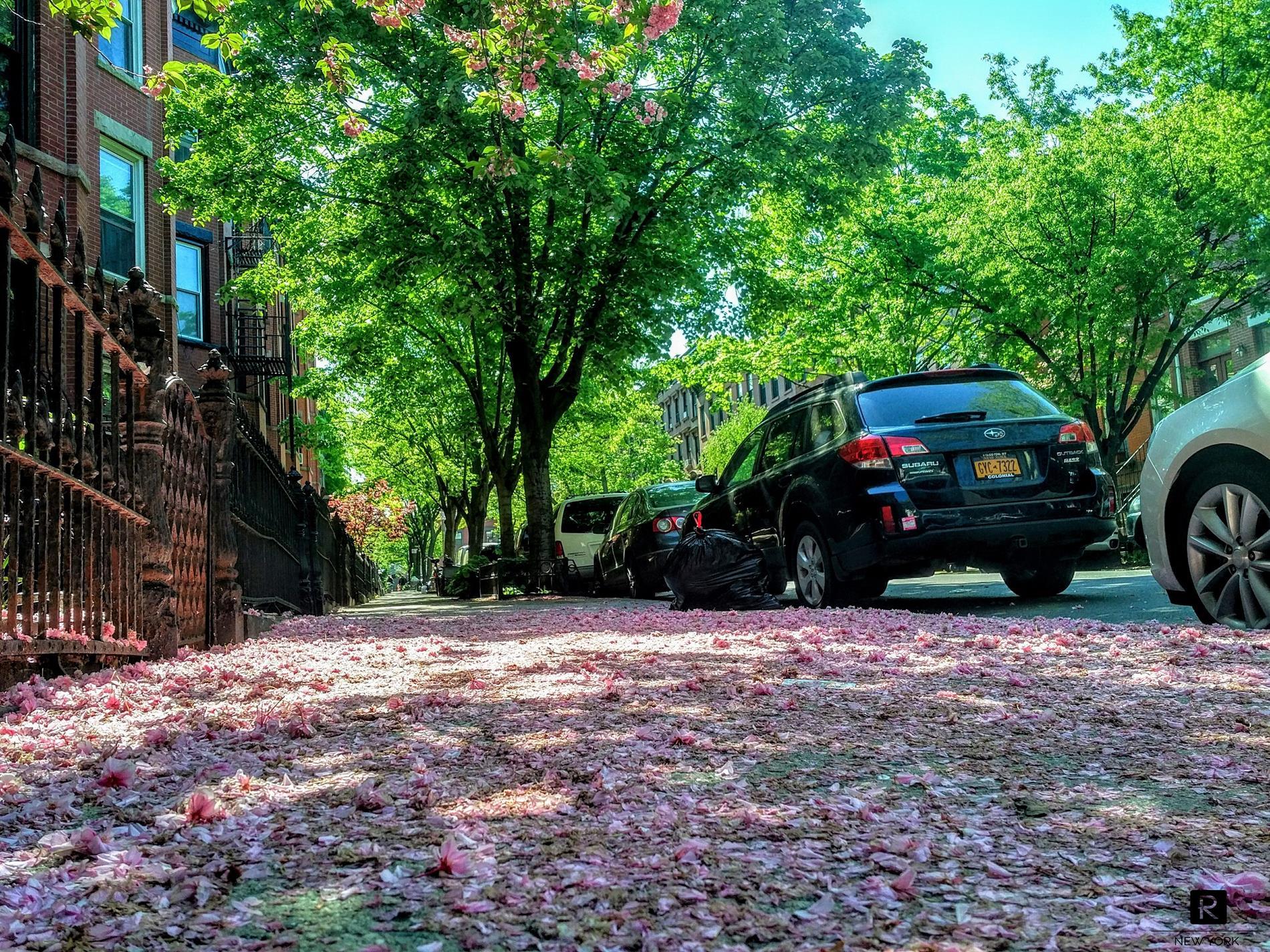 47 Saint Marks Avenue Park Slope Brooklyn NY 11217