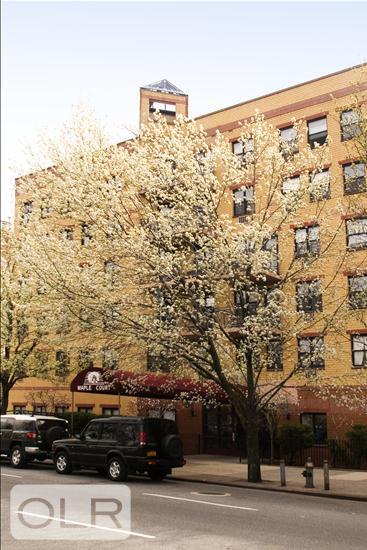 1901 Madison Avenue East Harlem New York NY 10035