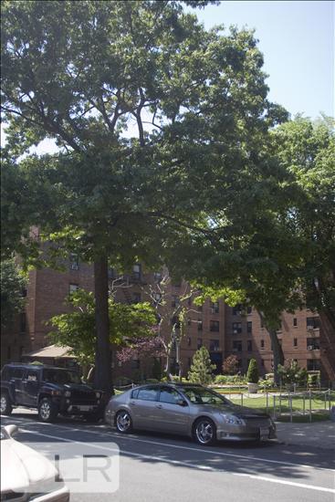 35 Oliver Street Bay Ridge Brooklyn NY 11209