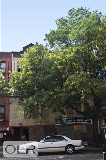 258 West 135th Street West Harlem New York NY 10030