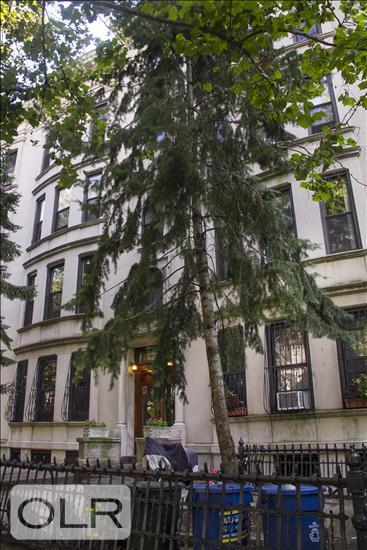 462 3rd Street Park Slope Brooklyn NY 11215