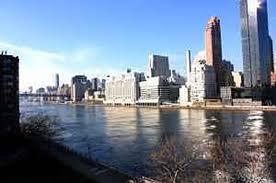 #1130498   Upper East Side