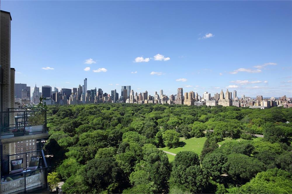 Central Park Views Penthouse NO FEE - Fifth Ave PS 6 W/D  Dog