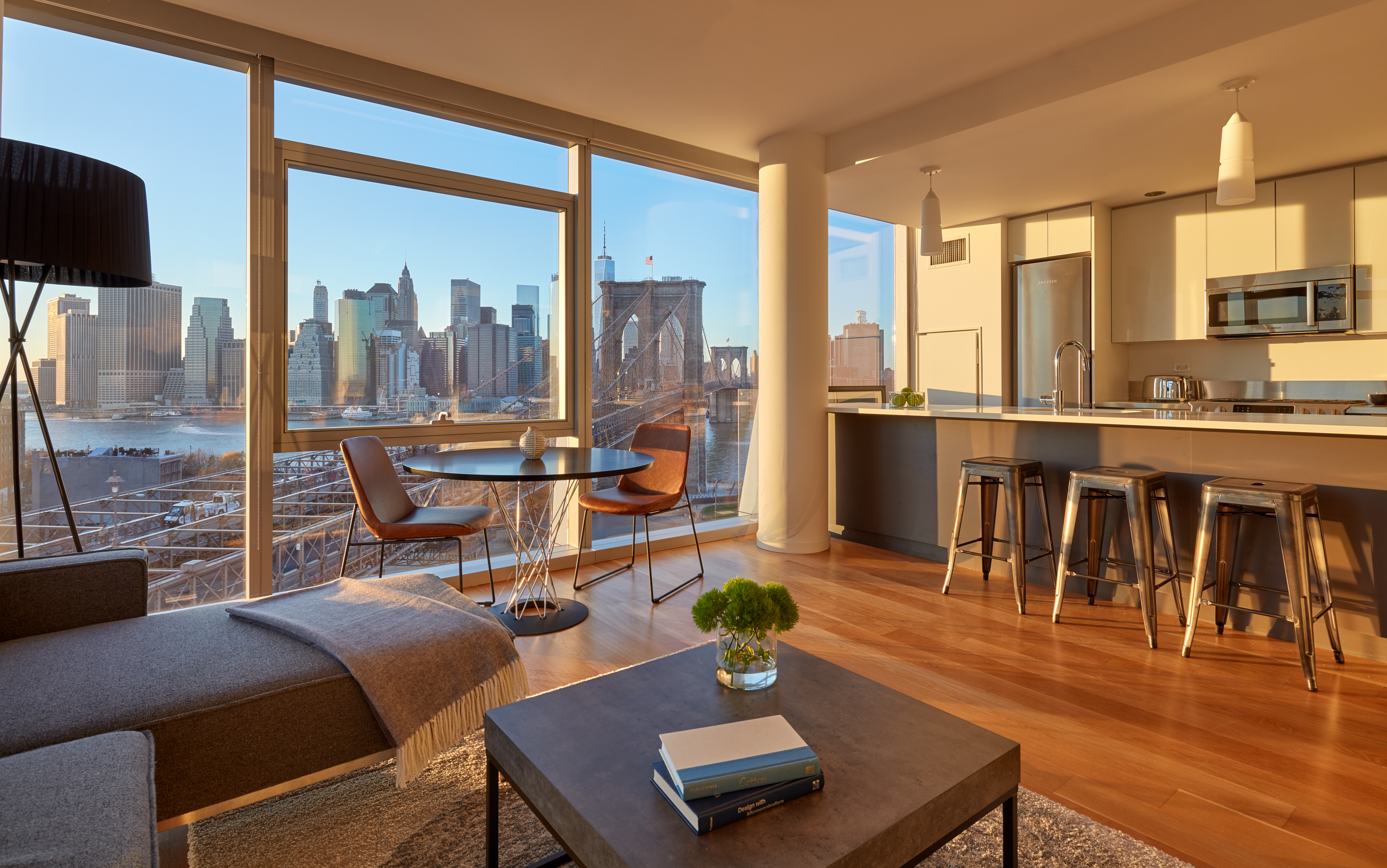 2 Bedroom with City Skyline Views in Dumbo